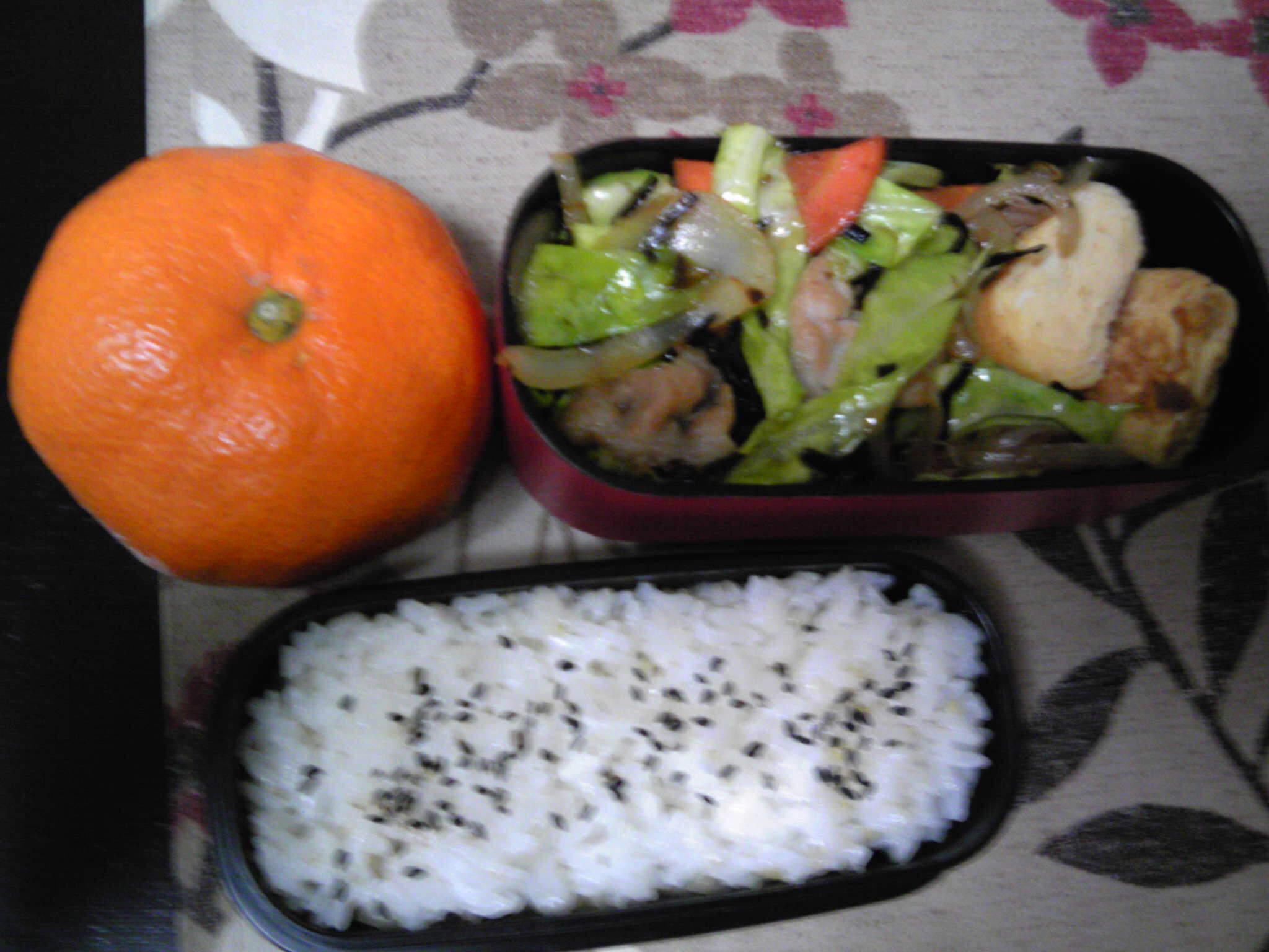 海の野菜炒め弁当
